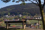 Rennsteig wandern ohne Gepäck von Hörschel nach Oberhof in 4 Etappen